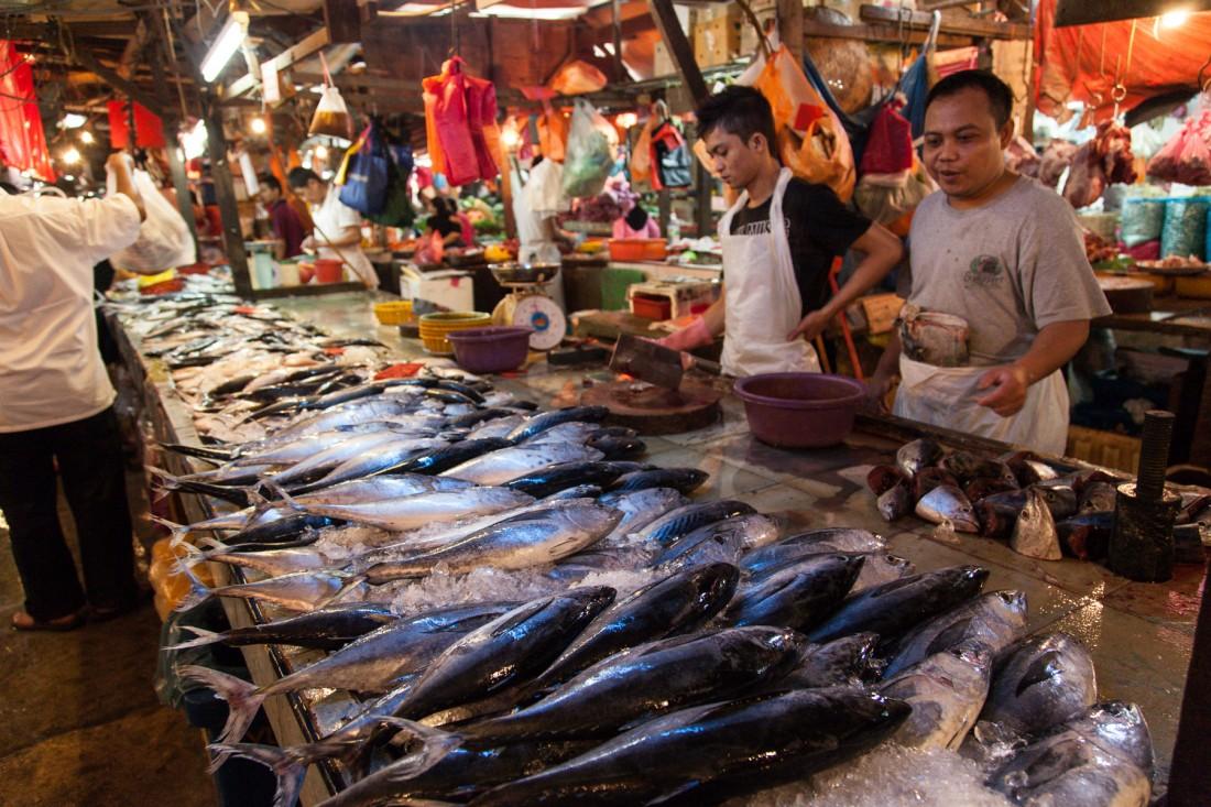 Fangfrische Fische beim Fischverkäufer