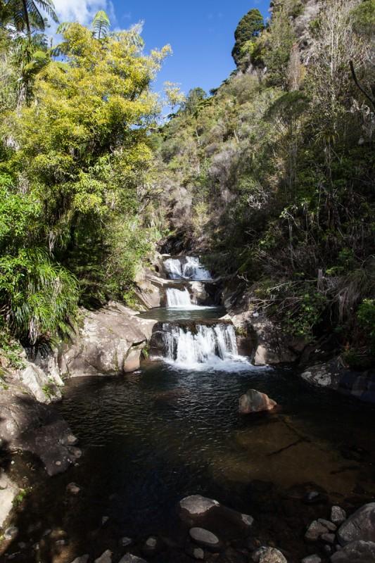 Wasserfall im Rapaura Watergarden