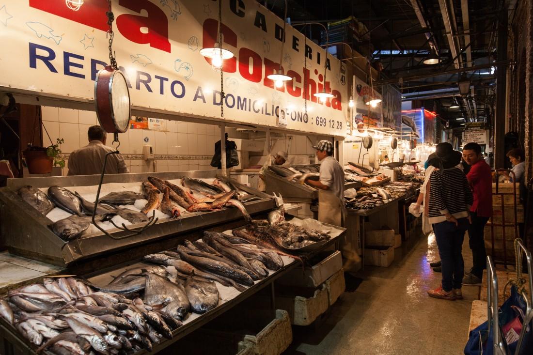 Im Gegensatz zu allen anderen Fischmärkten, die wir bisher besucht haben,  ist hier vor 10:00 gar nichts los.
