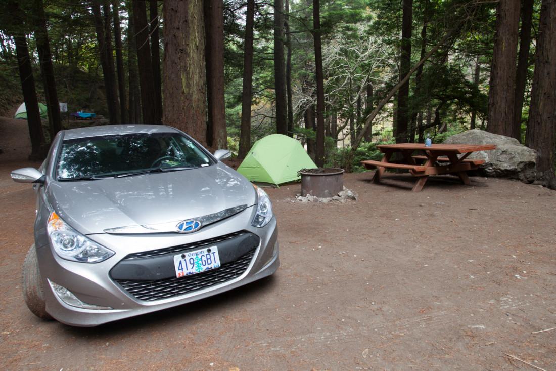 Die Übernachtungsmöglichkeiten bis San Simeon sind sehr begrenzt, da es keine echten Ortschaften mehr gibt. Die wenigen Cabins, Lodges und Motels am Rande der Straße sind überfüllt und teuer. Gut dass wir ein Zelt dabei haben, das wir idyllisch unter den Redwoods aufschlagen konnten.