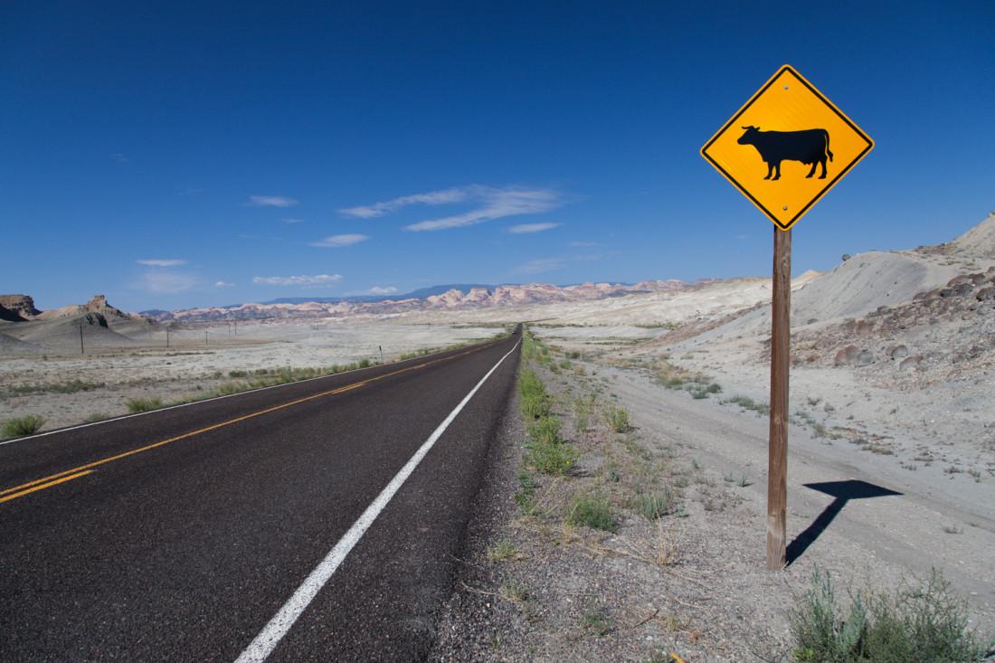 Und wieder auf der Straße. Zwischen Canyonlands und Bryce Canyon lag wieder ein gutes Stück Weg vor uns. Die Landschaft ist hier aber äusserst abwechslungsreich, so wurde die Fahrt kaum langweilig.