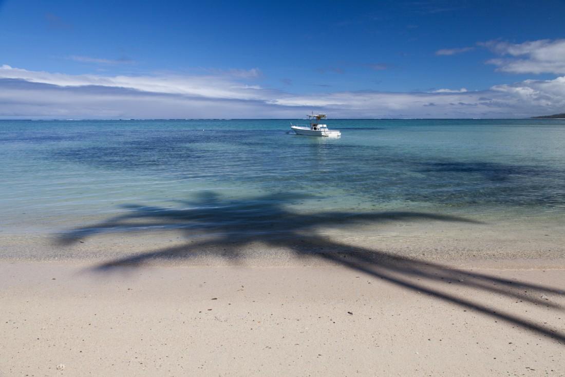 Palme und Boot